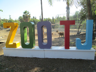 Wild Foodie Tours: Tijuana Zoo, Park, and Food Tour