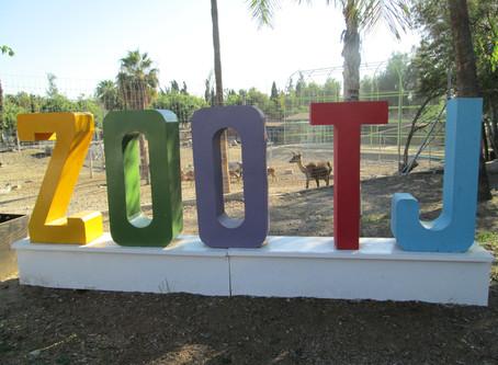 Wild Foodie Tours: Tijuana Zoo, Park, and Food Tour