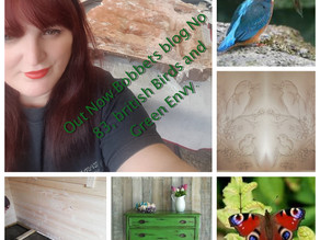 Bobbett's blog No 83, British Birds and green envy.