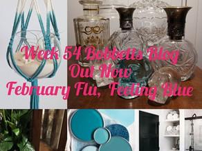 Week 54 Bobbett's blog, February Flu, feeling blue.