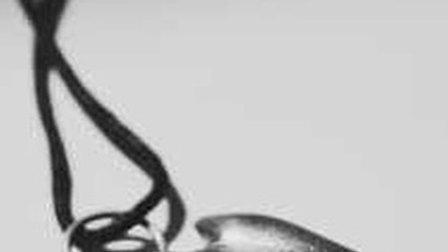 Eugiena Pendant on cord