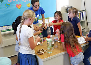 ICES Education STEM Program Mathematics