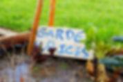 ICES Eduction Culinary Program Gardening