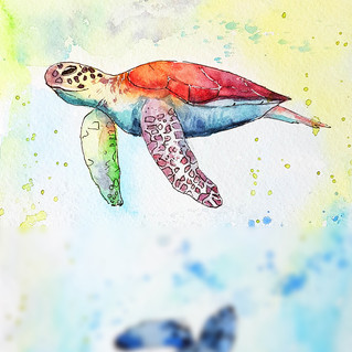 Sea Turtle Painting Original Art Watercolor Animal Nautical Small Artwork