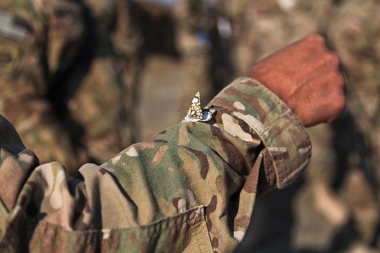 afghanistan-60666_960_720.jpg