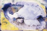 Impressão em papel hahnemüehle com aplicação de metacrilato | 60 x 90 cm | R$ 3800,00