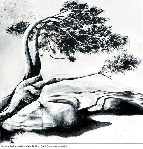 Contemplação, 2017
