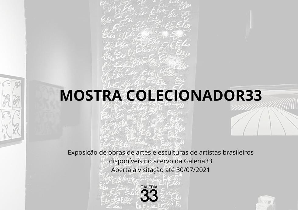 Catalogo Mostra Colecionador33.jpg