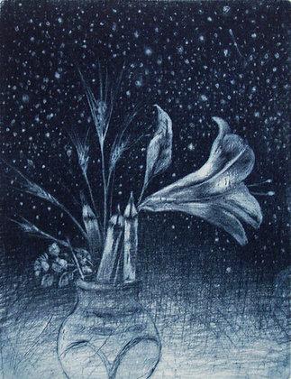 D.Soncini ,Sonhando com as estrelas II| 2020