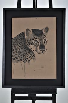Nome: Ronaldo Diniz Título: Onça pintada  Panthera onca (Linnaeus, 1758) Técnica: Nanquim sobre papel craft 300g Dimensão: 48x66cm Ano: 2019