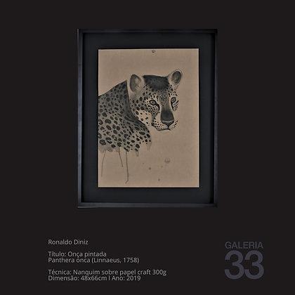 Título: Onça pintada Panthera onca (Linnaeus, 1758)