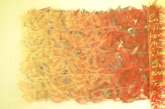 MÔA | Voo entre cores intensas, 2002