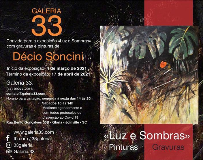 VISITE LUZ E SOMBRAS DE DÉCIO SONCINI 04.03 A 17.04