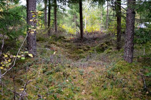 Kullgrop jernalder-middelalder. Foto: Eldengaard.