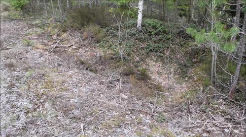 Kullgrop jernalder- middelalder. Foto: Eldengaard