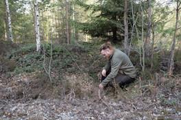 Funn av kullgrop. Jernalder-middelalder. Foto: Eldengaard