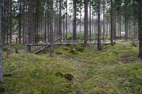 Foto: Eldengaard