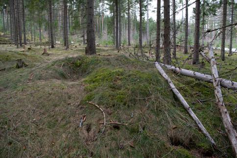 Rundhaug med tydlig plyndringsgrop. Jernalder. Foto: Eldengaard