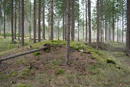 Fotgrav Foto: Eldengaard