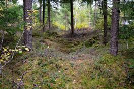 Funn av kullegrop. Jernalder - Middelalder. Foto: Eldengaard