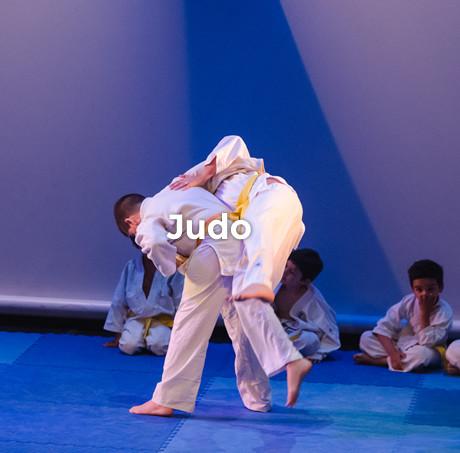 mod_judo.jpg