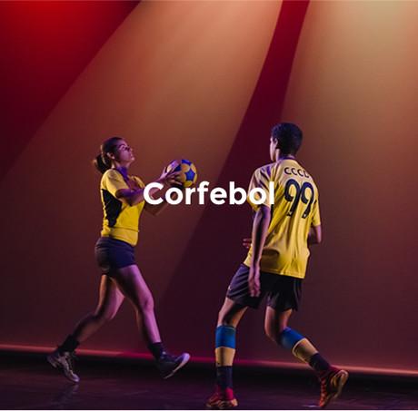 flip_corfebol.jpg