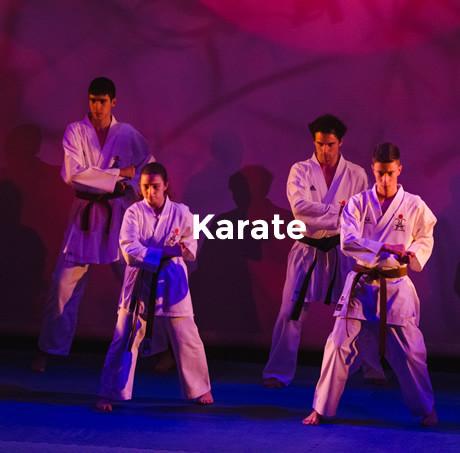 mod_karate.jpg
