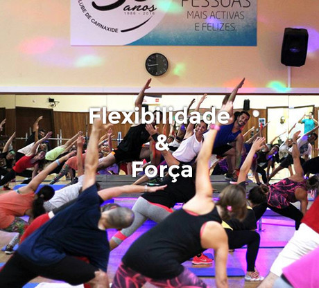 mod_flexibilidade.jpg