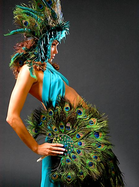 Peacock2.tif