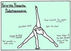 Revolved Wide Leg Stretch