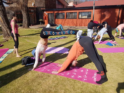 Double Downward Facing Dogs