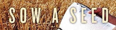 sow-a-seed.jpg
