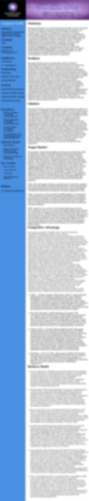 executive summary blocks-page-001.jpg