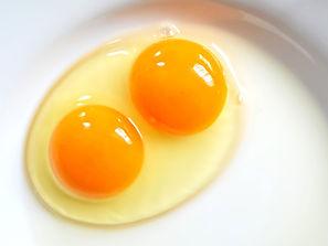 double-yolk-blog.jpg