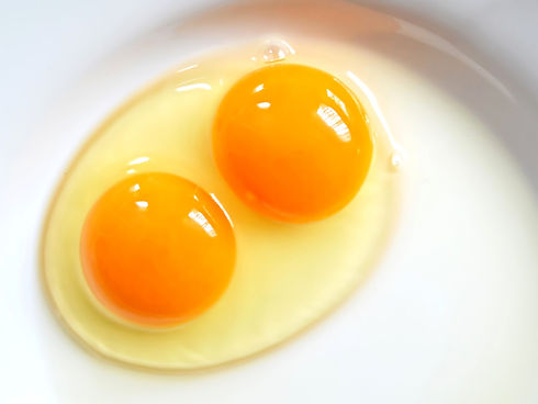 double-yolk-blog.jpg