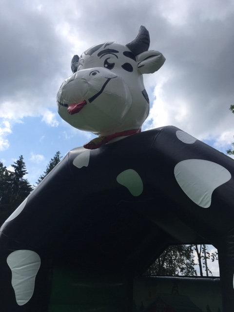 Hüpfburg Kuh ( Couw )