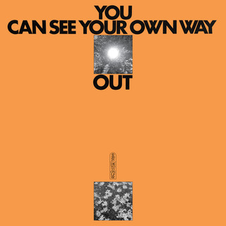 Ilyas Ahmed & Jefre Cantu-Ledesma: You Can See Your Own Way Out