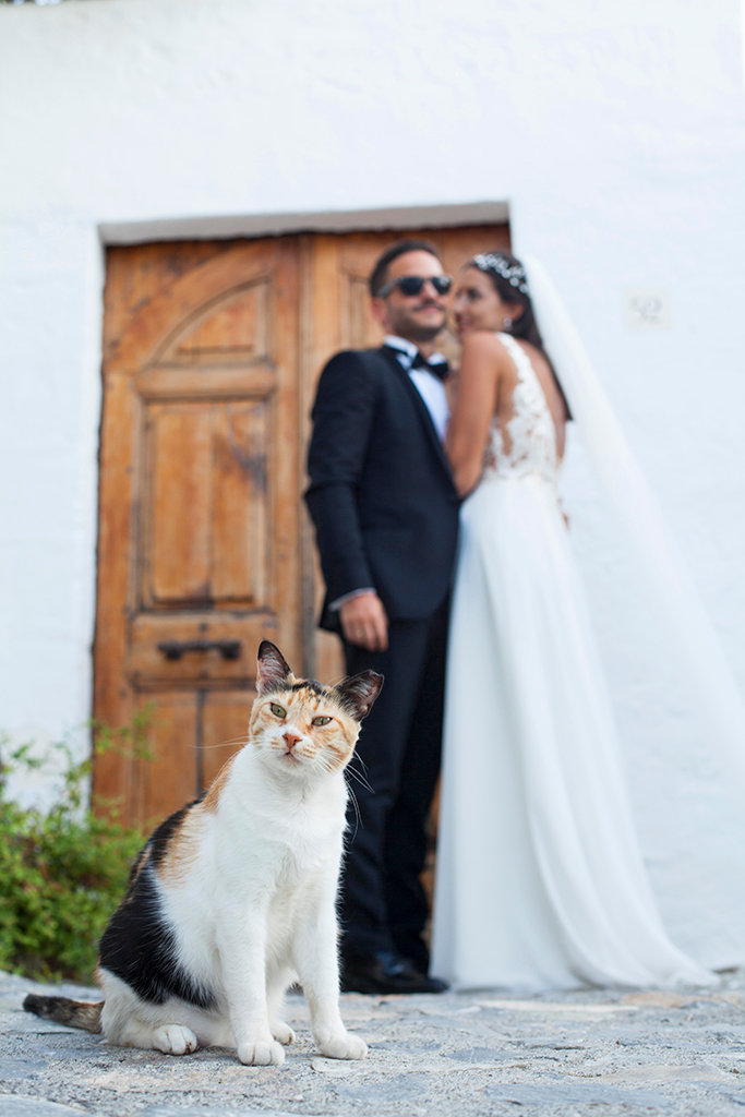 Φωτογράφος στη Ρόδο.Φωτογράφοι στη Ρόδο.Καλλιτεχνική φωτογράφιση γάμου και βάπτισης.Φωτογράφος γάμου και βάπτισης στη Ρόδο Κω Καλυμνο Λερο Πατμο Συμη Καστελλοριζο.Επαγγελματική φωτογράφιση γαμου στη Ρόδο.Φυσική φωτογραφία γάμου στη Ρόδο.Δημιουργική φωτογράφιση γαμου και βάπτισης στη Ρόδο.Γάμος και βάπτιση στη Ρόδο.Νυφικά στη Ρόδο.Αυθόρμητη φωτογραφία γαμου και βάπτισης στη Ρόδο.Καλύτερος Φωτογράφος γαμου στη Ροδο