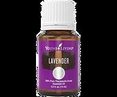 lavender%20EO_edited.png