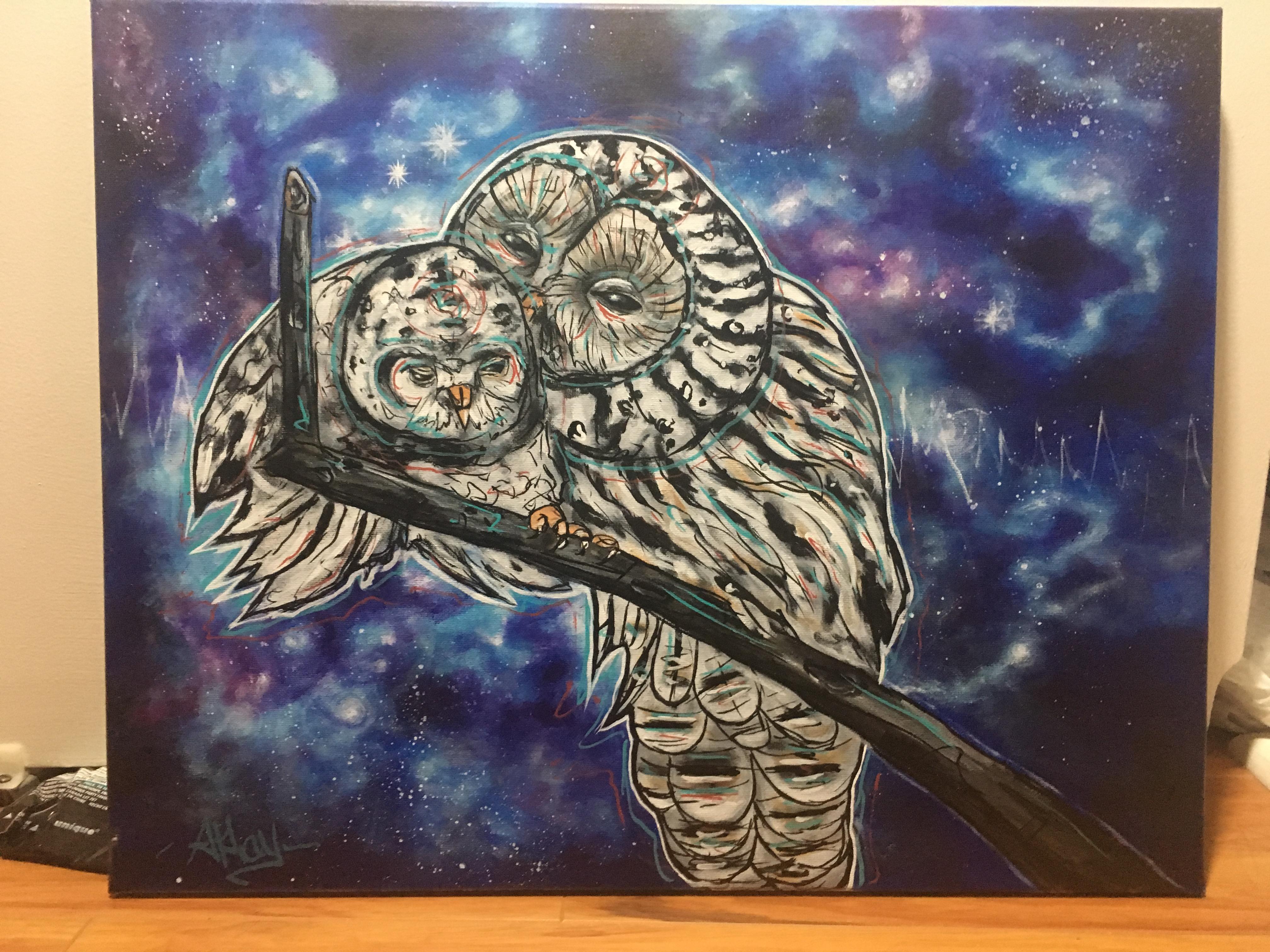 not owls