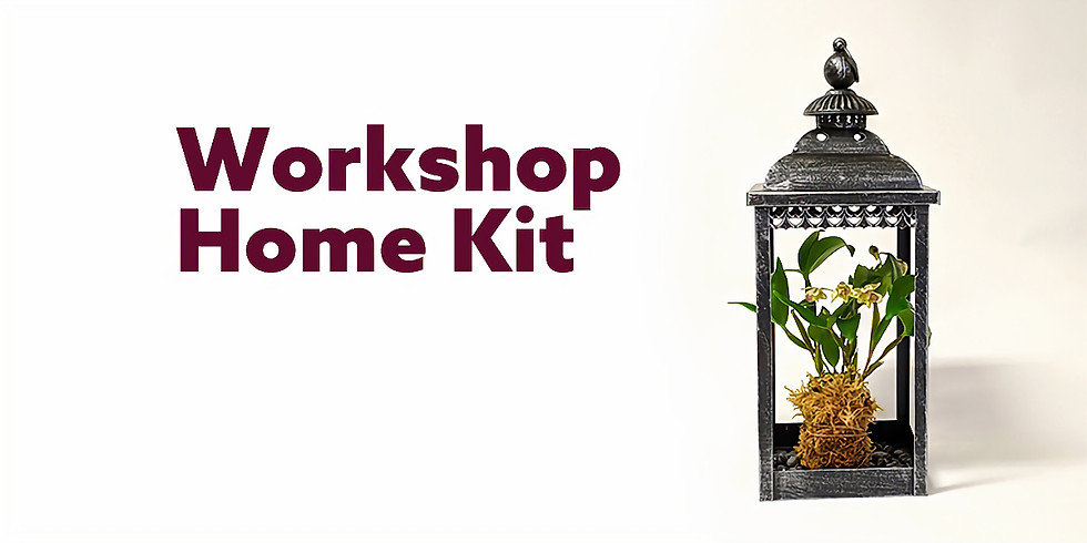 Orchid Lantern (Home Kit) (1)