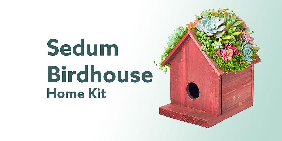 Sedum Birdhouse Home Kit