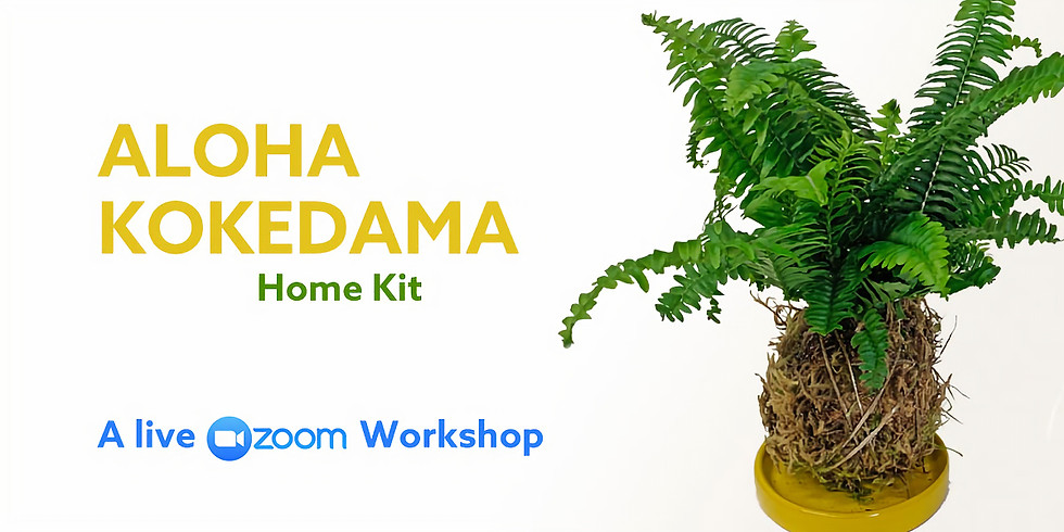 TEST - Aloha Kokedama Home Kit