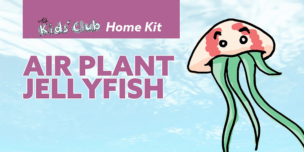 Air Plant Jellyfish