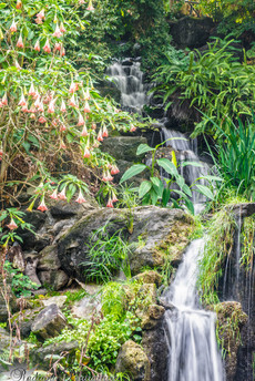 Arboretum Falls 3.jpg