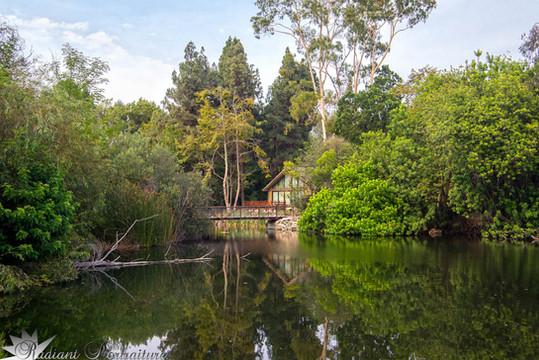 Nature Center.jpg