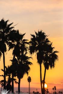 Long Beach Dawn.jpg