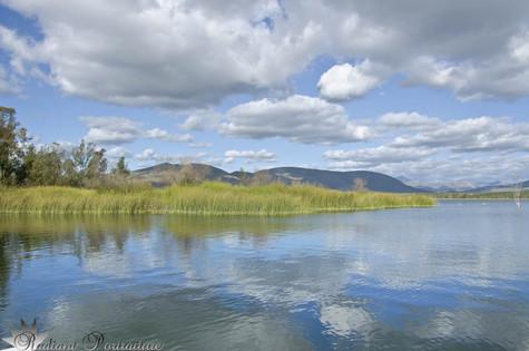 Otay Lake Reflections.jpg