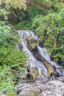 Arboretum Falls 5.jpg