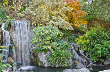 Autumn Falls 2.jpg
